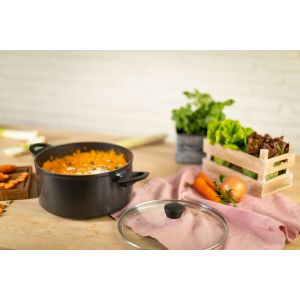 Easy Induction Non-Stick Casserole
