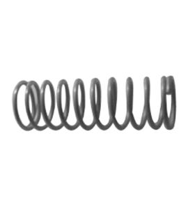 Valve Springs All Models(2pcs)