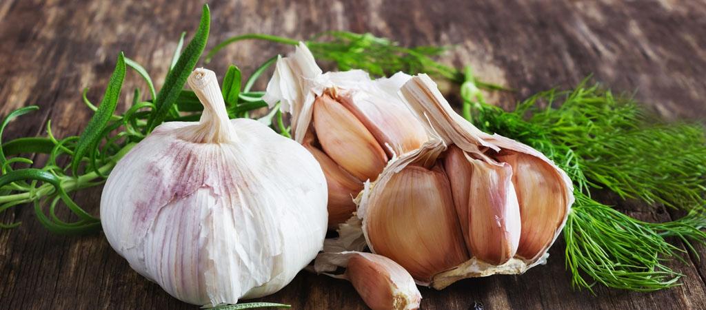 Garlic - An Essential Ingredient
